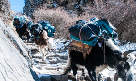 Mount Everest Base Camp Trek – Day 1